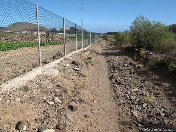 Aldea Blanca - SL-TF-231 - Tenerife
