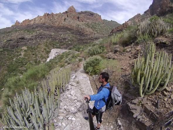Canales de Teno - Barranco Seco - Tenerife