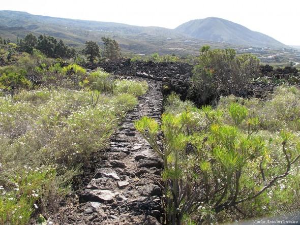 Guía de Isora - Montaña de Tejina en el horizonte - Tenerife