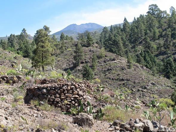 Camino de La Campana - Pico Viejo en el horizonte
