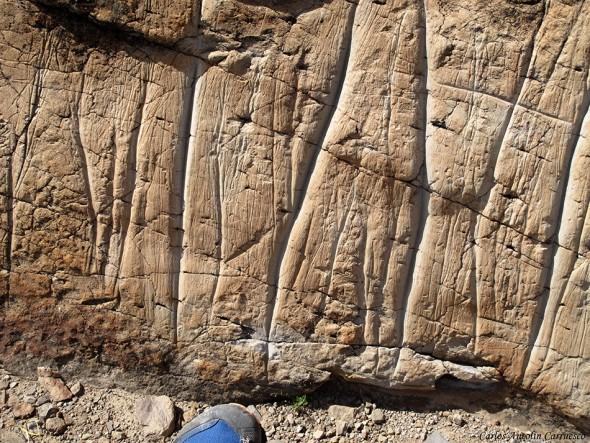 Grabados rupestres guanches - Tenerife