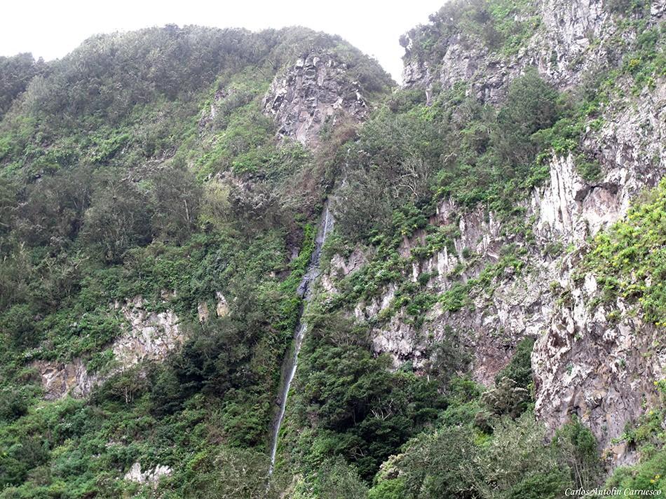El Cedro - La Gomera