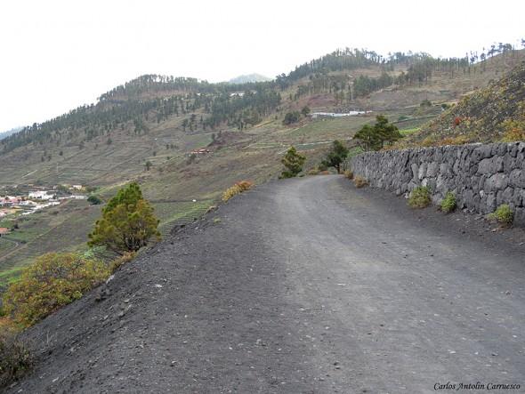 Transvulcania - GR131 - La Palma - los canarios - viñedos de fuencaliente