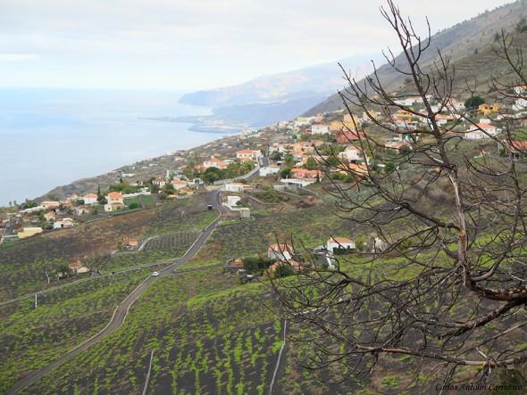 Transvulcania - GR131 - La Palma - Viñedos de Fuencaliente - Llanos Negros y Los Quemados