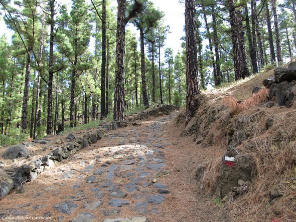 Transvulcania 2015 - GR131 - La Palma