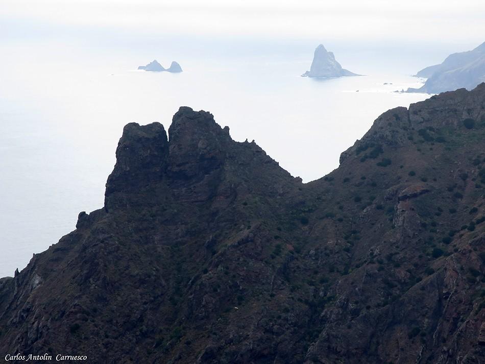 Taborno - Anaga - Tenerife - marrubial - roque marrubial