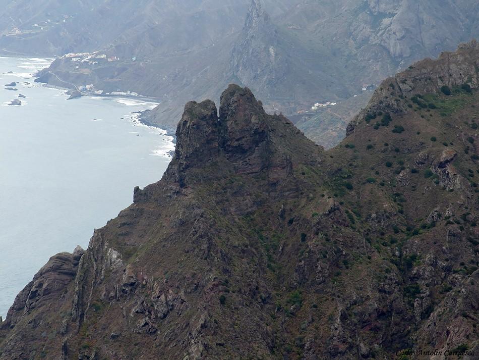 Taborno - Anaga - Tenerife - marrubial