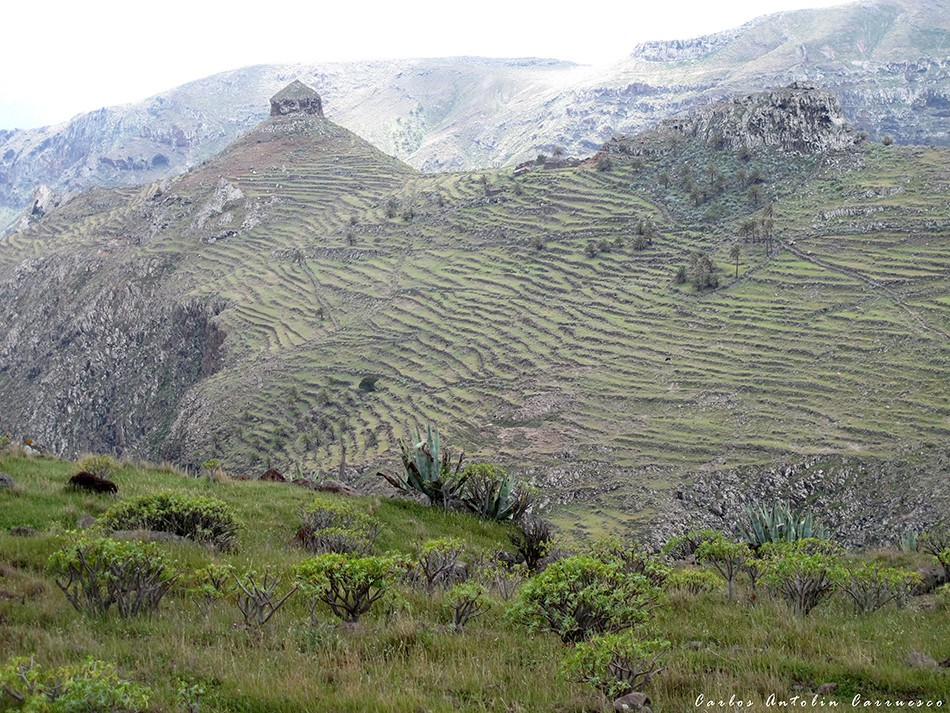 El Sombrerito - GR131 - La Gomera