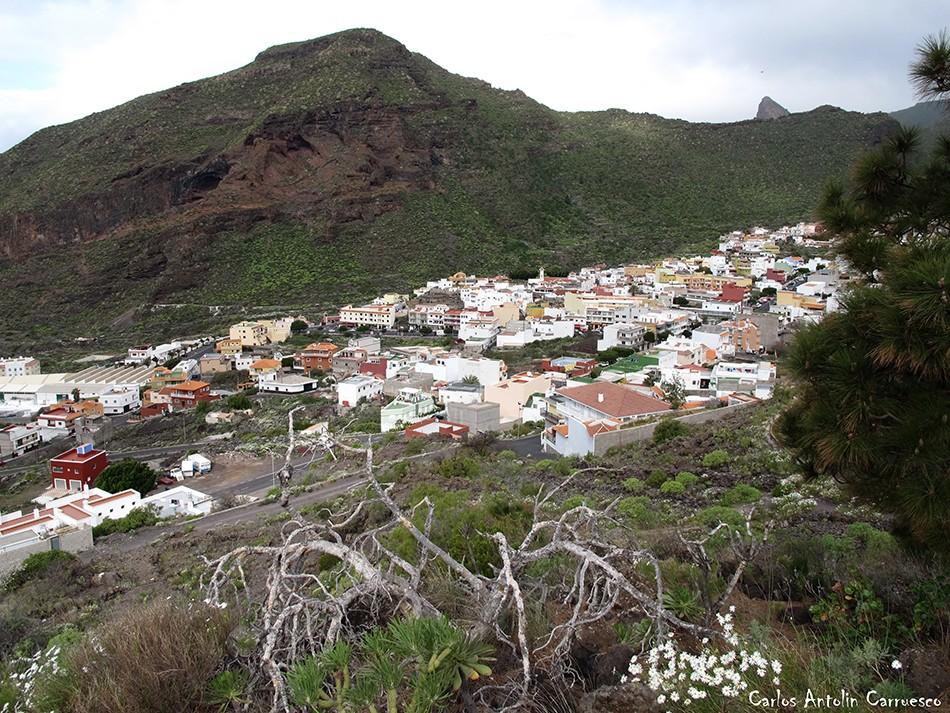 Tamaimo - Tenerife - montaña de guama