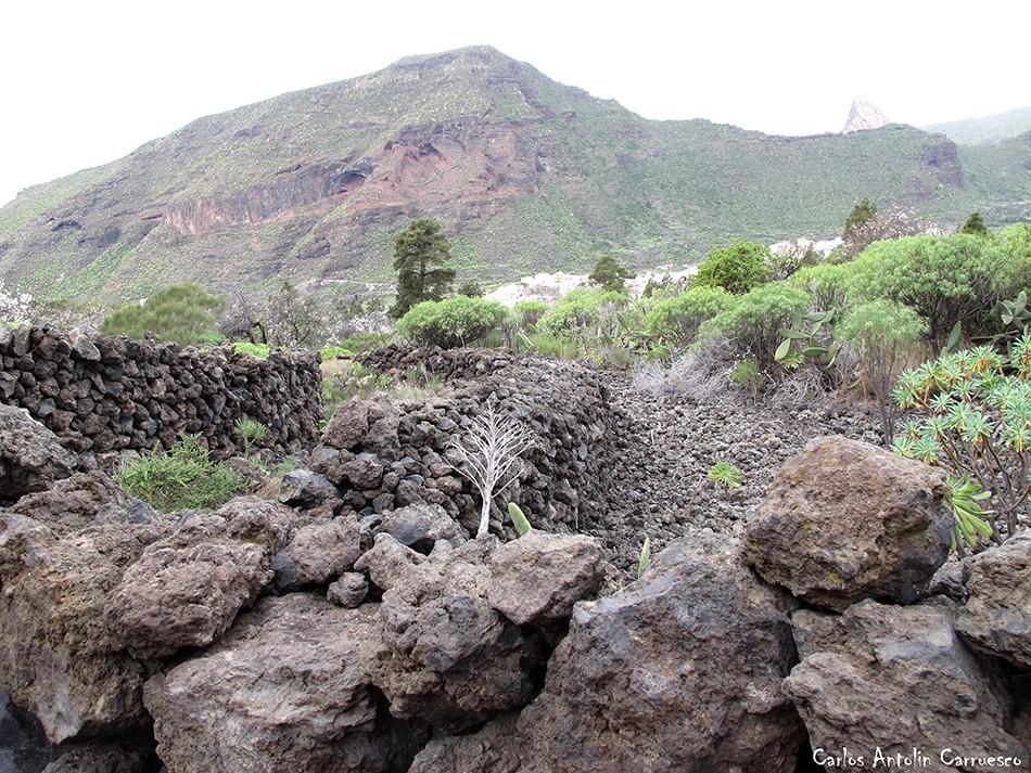 Montaña de Guama - Tamaimo - Tenerife
