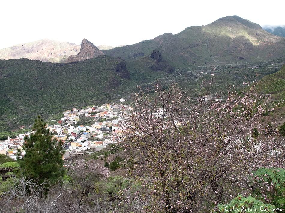 Tamaimo - Risco Blanco - Tenerife