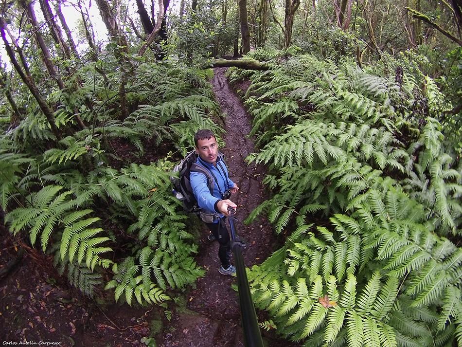 El Pijaral - Reserva Mundial de La Biosfera - Anaga - Tenerife
