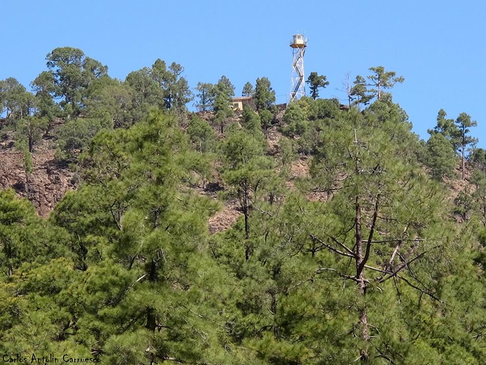 Vilaflor - GR131 - Tenerife - torreta forestal