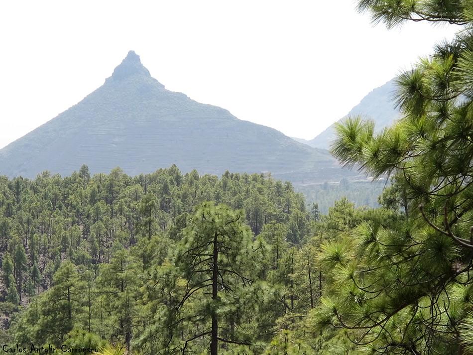 Vilaflor - GR131 - Tenerife - Roque Imoque - Ifonche