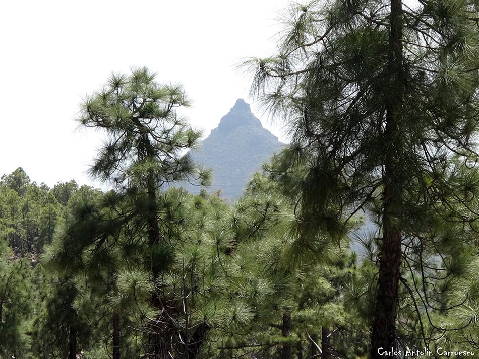 Vilaflor - GR131 - Tenerife -Roque Imoque - Ifonche
