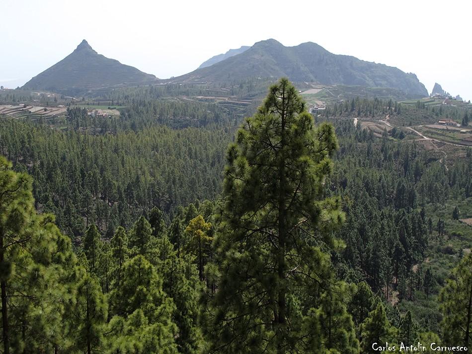 Roque Imoque - Ifonche - Tenerife - GR131