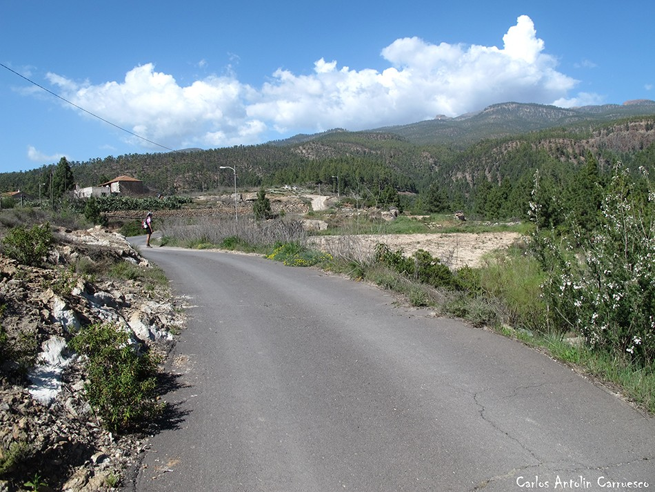 Vilaflor - GR131 - Ifonche - Tenerife