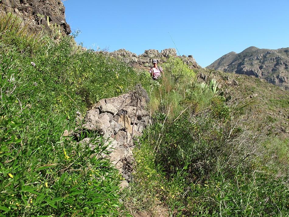 Adeje - Camino de Carrasco - Tenerife