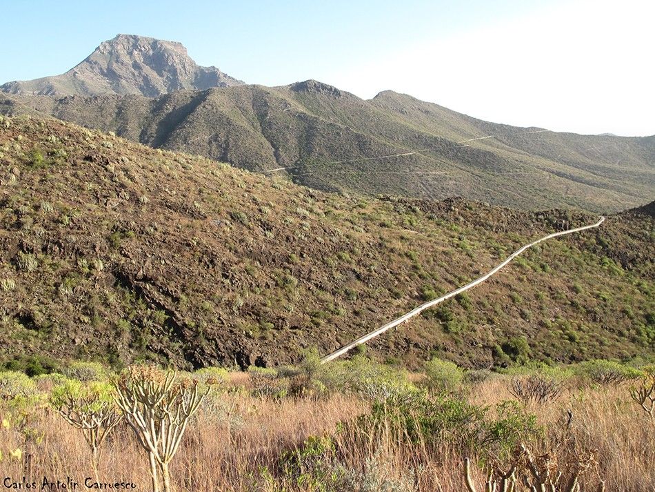 Adeje - Camino de Carrasco - Tenerife - roque del conde