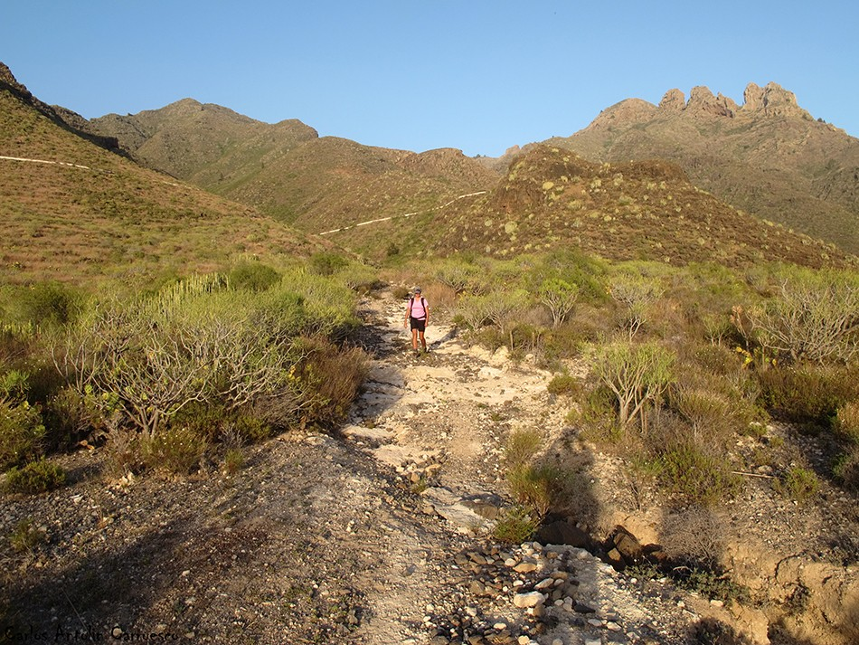 Adeje - Degollada de Los Frailitos - Tenerife