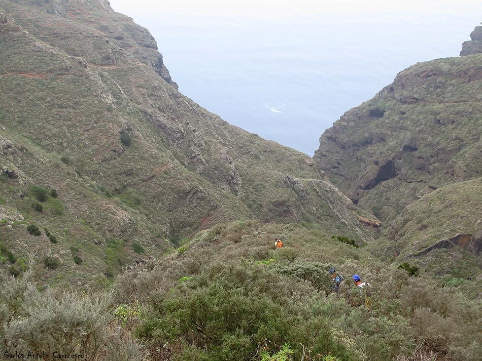 La Angostura - Anaga - Tenerife