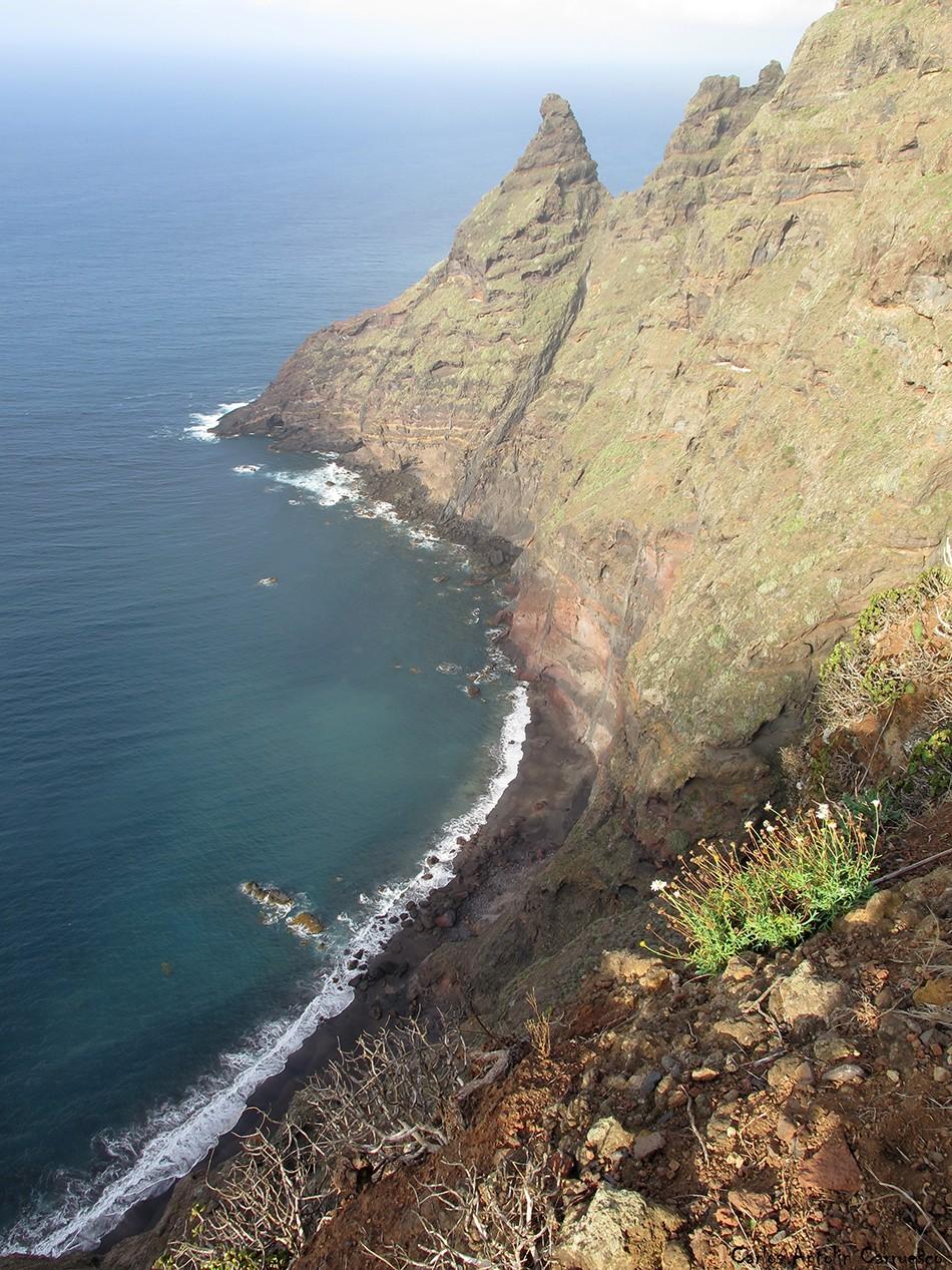 Pachila - Picacho de Magín - Anaga - Tenerife