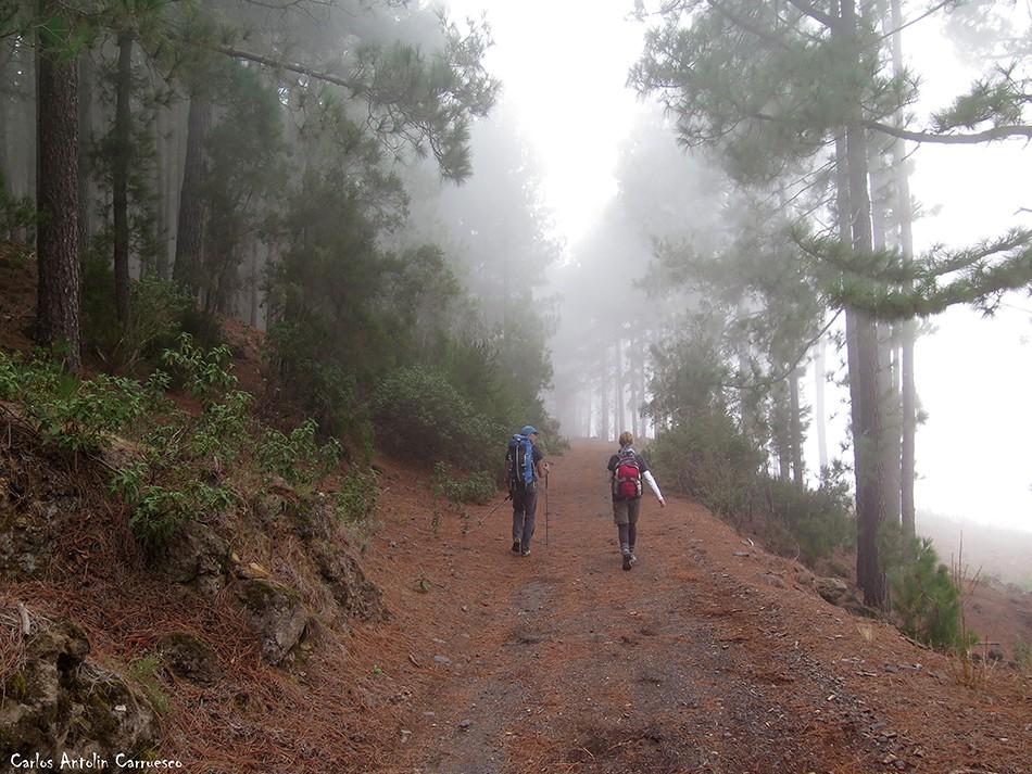 Pista Chimoche - La Orotava - Tenerife