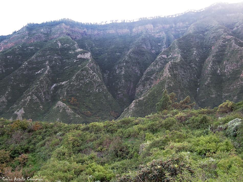 Barranco de Badajoz - Tenerife