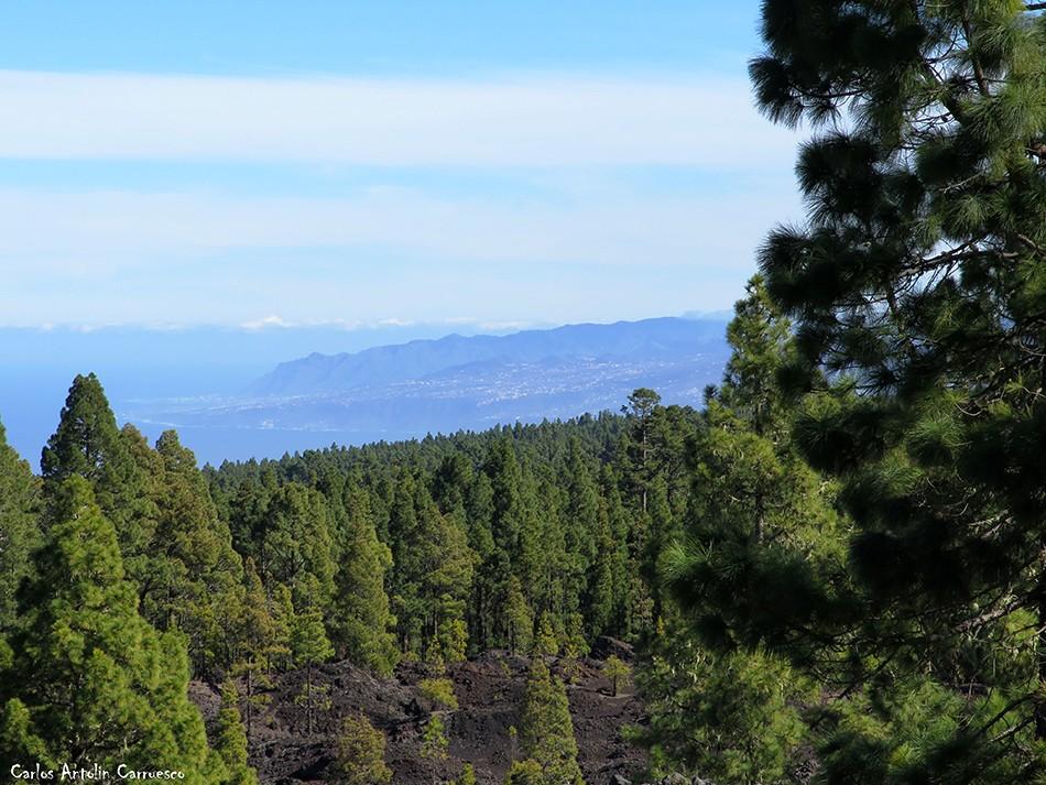 Corona Forestal - Garachico - Tenerife - la orotava