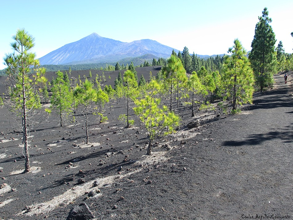 Volcán de Garachico - Tenerife - pico viejo - teide