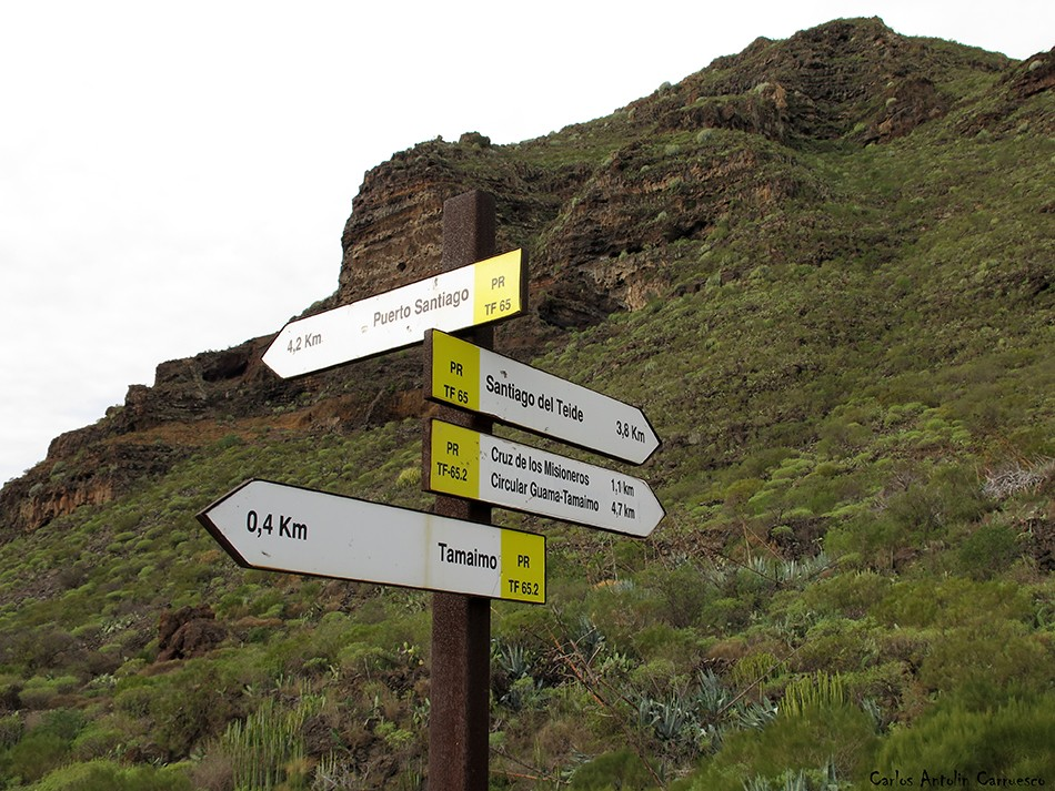 Tamaimo - Teno - Tenerife - montaña de guama - guama