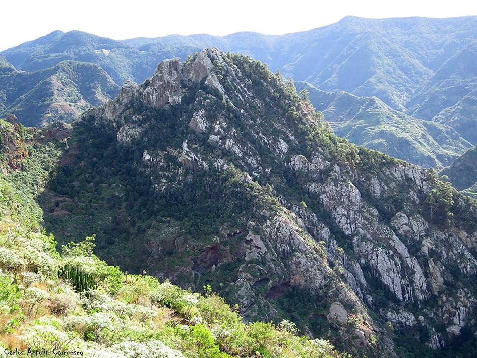 Chinamada - Anaga - Tenerife- Roque de los Pinos