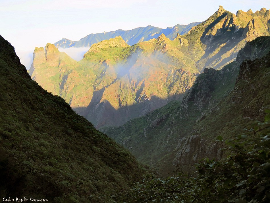 Palo Hincado - Anaga - Tenerife - Roque Marrubial