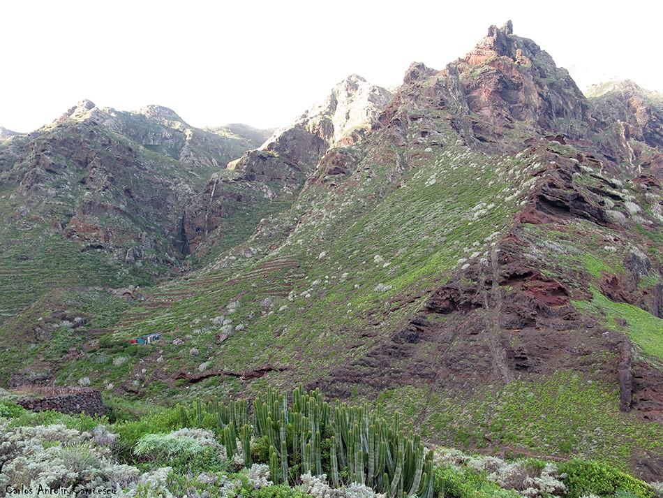 Barranco de Afur - Anaga - Tenerife - Cumbres de Taborno - Palo Hincado