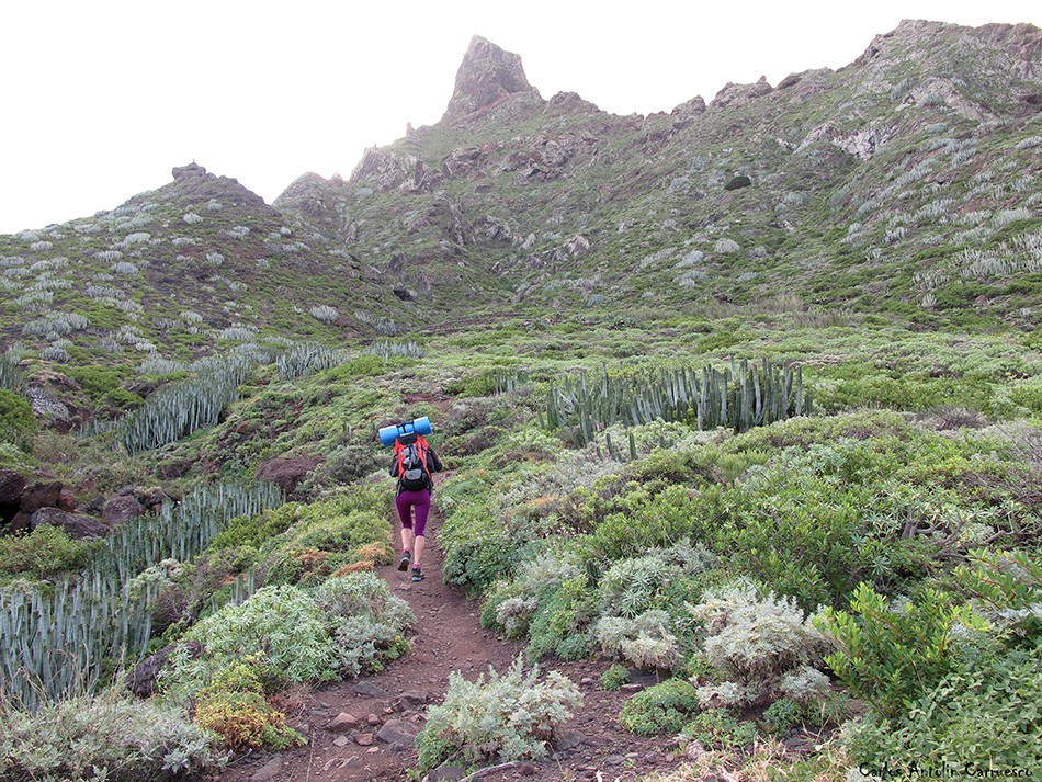Sendero de Taganana - Anaga - Tenerife