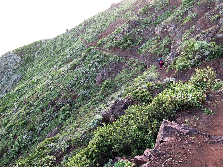 Sendero a Taganana - Anaga - Tenerife