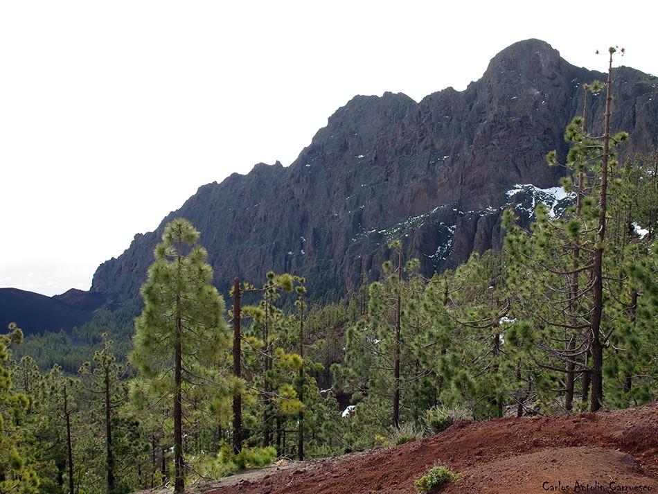 Caldera de Pedro Gil - Pico del Valle - Tenerife