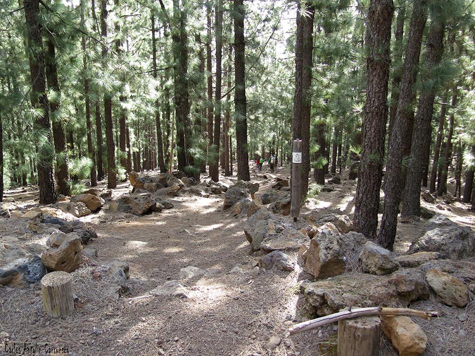 Caldera de Pedro Gil - Corona Forestal - Tenerife - Camino de Candelaria