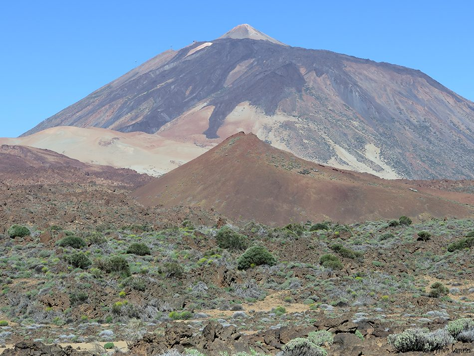 Siete Cañadas - Teide - Tenerife - montaña mostaza