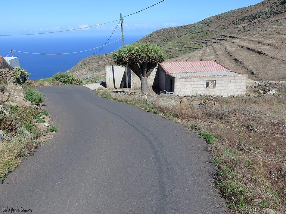 Teno Alto - Las Cuevas - Tenerife
