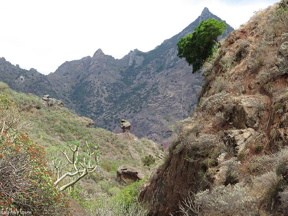 Altavista - Anaga - Tenerife