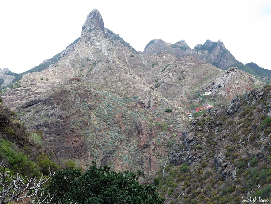 Altavista - Anaga - Tenerife - páez