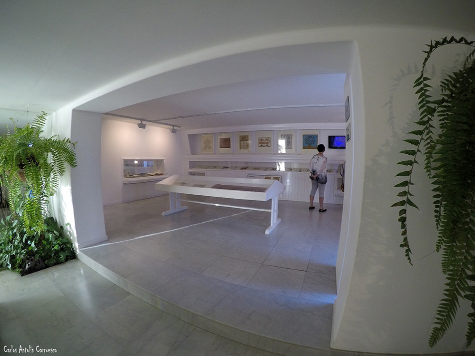 Fundación César Manrique - Tahiche - Lanzarote