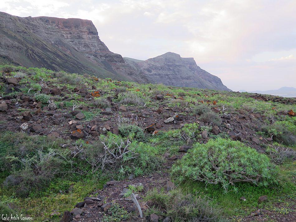 Risco de Famara - Camino de Los Gracioseros - Lanzarote