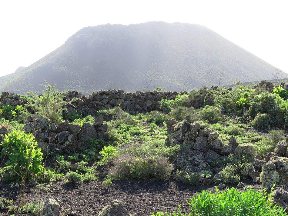 Playa del Risco - Volcán de La Corona - Lanzarote
