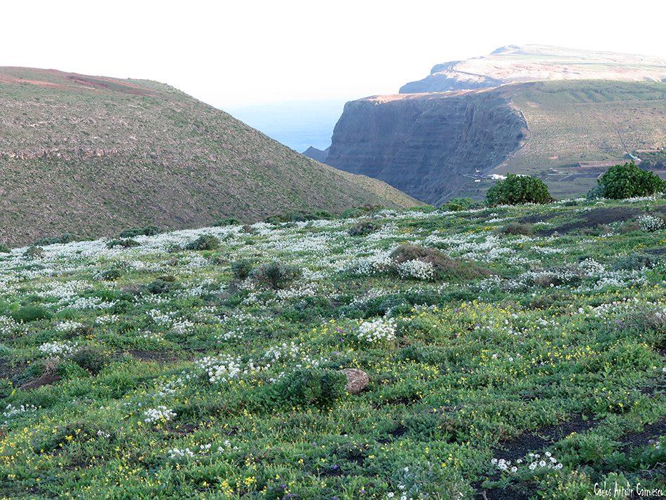 Camino de Gayo - Macizo de Famara - Lanzarote