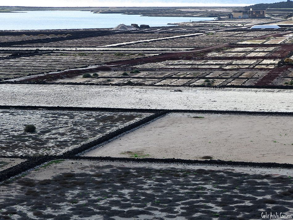 Salinas del Janubio - Lanzarote