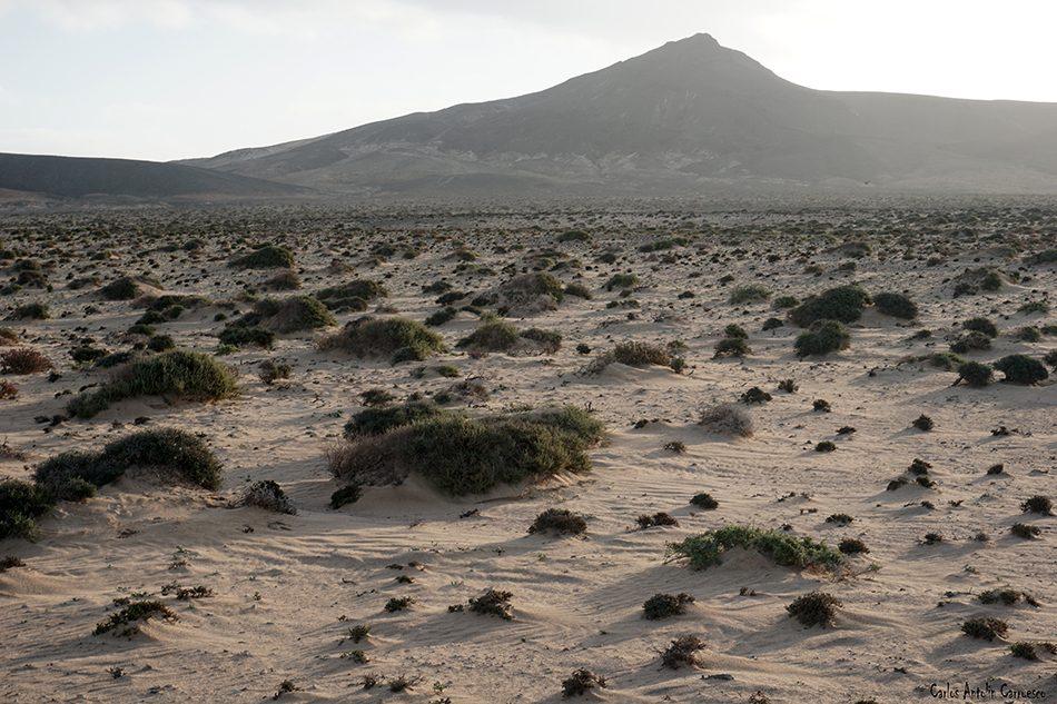Punta de Jandia - Fuerteventura - las talahijas