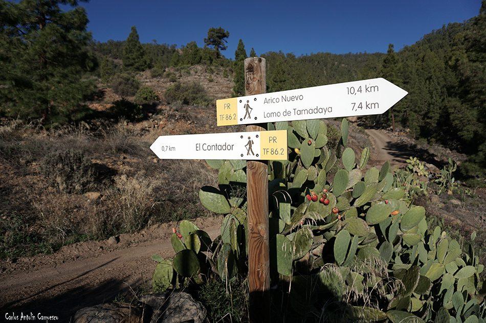 Cumbres de Arico - El Contador - Tenerife - Barranco de Las Hiedras