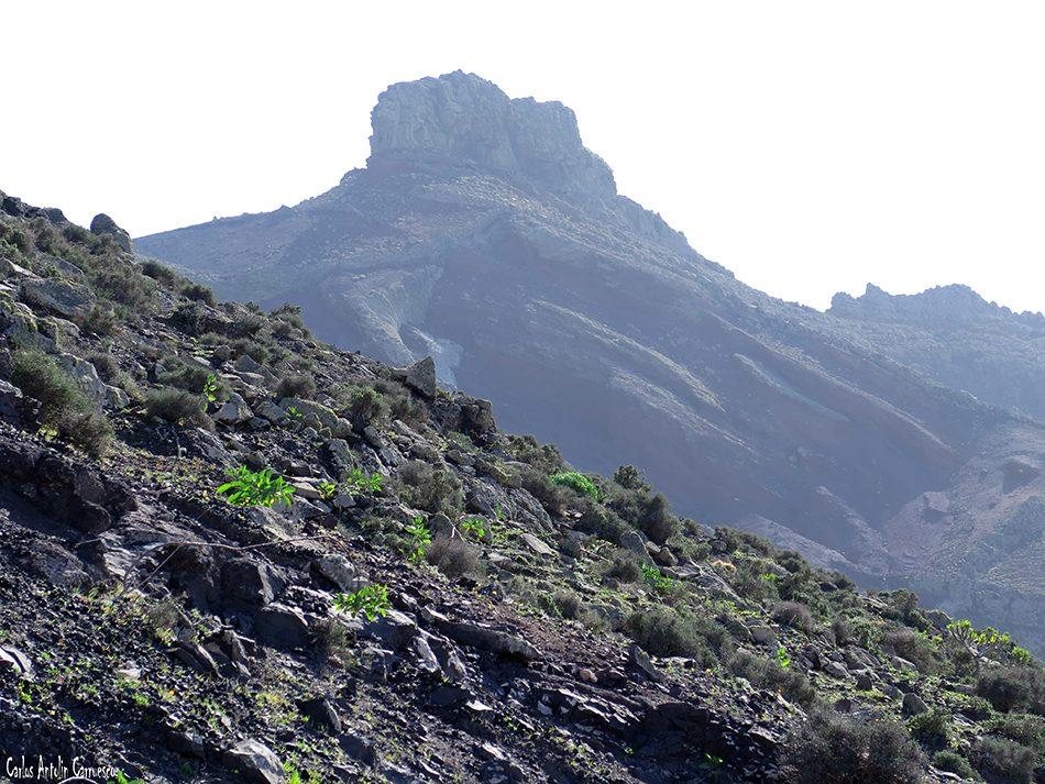 El Cardón - Ermita del Tanquito - Fuerteventura - espigón de ojo cabra